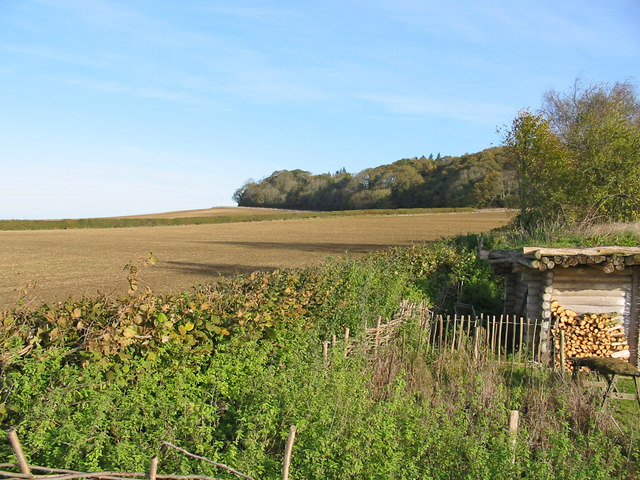 Farmland north of Cranborne Dorset