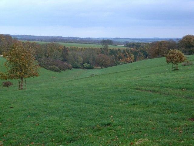 Near Trafalgar Farm