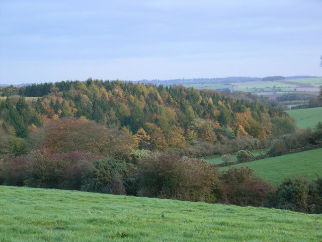 Keeper's Hill Wood