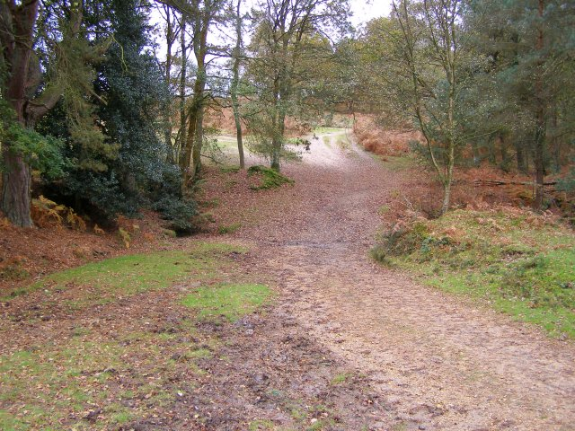 Dry ford between Hale Purlieu and Turf Hill, New Forest