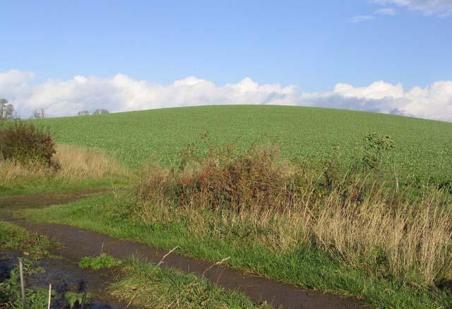 Arable Field near Winfield Farm