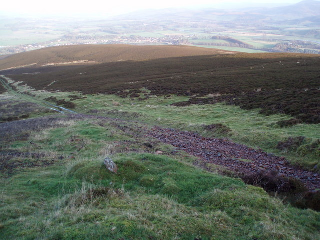 Wee Hill