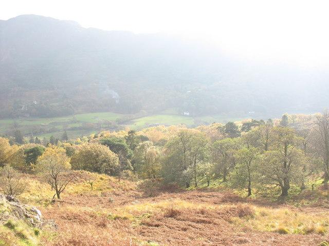 Looking back down towards Craflwyn Woods