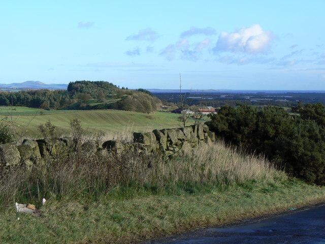 Goatmilk Hills