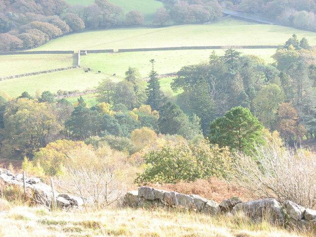Farmland below Craflwyn Woods viewed from below Cocyn Craflwyn