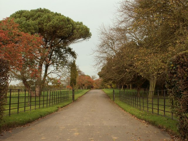 The driveway to Nedging Hall