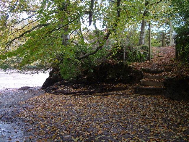Footpath beside creek