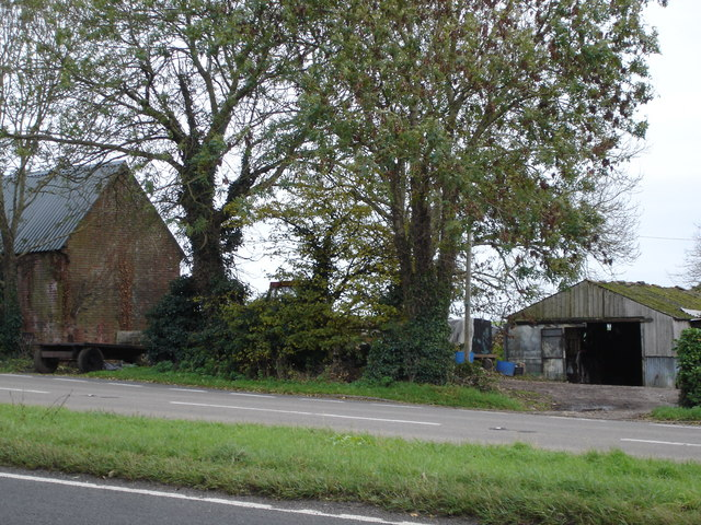 Farm workshops at Martin Drove End