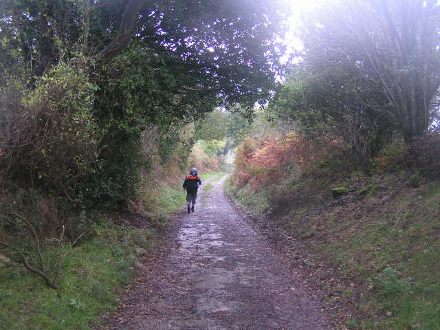 Towards Littlebeck Lane
