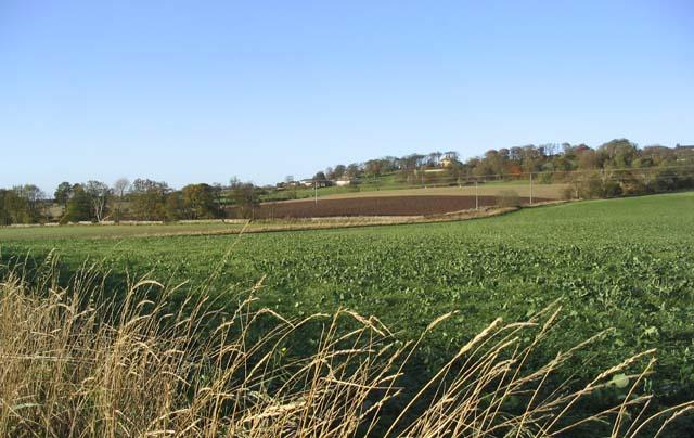 Agricultural land near High Letham