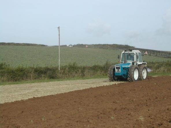 Field work - Salcombe