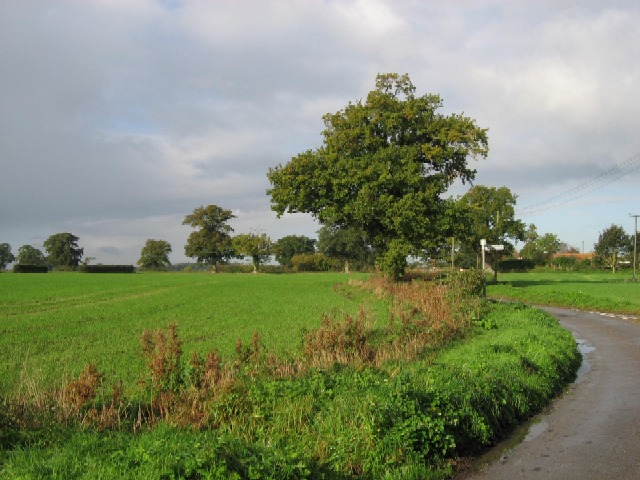 A Norfolk View