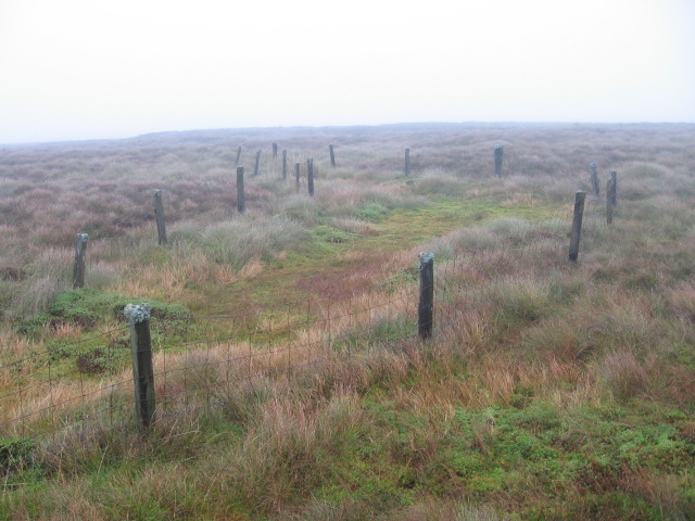 Fenced bog on Meanlour Hill