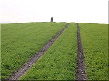NT9443 : Mattilees Hill trig by Iain Macaulay