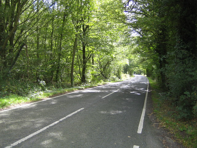 East Clandon Common: Ripley Road