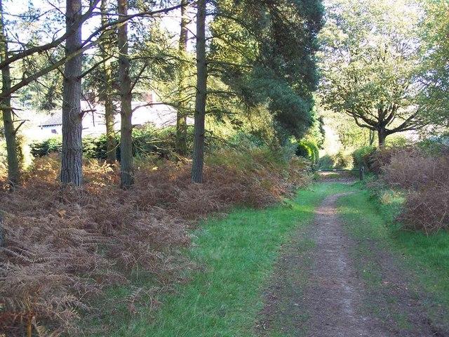Near Fairoak Lodge