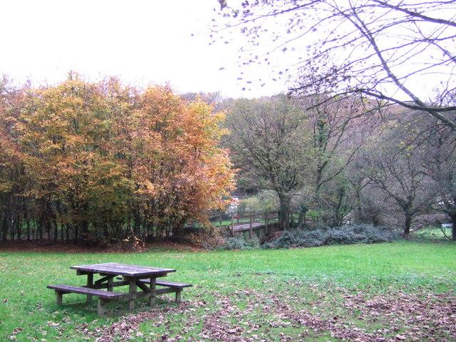 Cilrhedyn bridge picnic area  in the Gwaun Valley