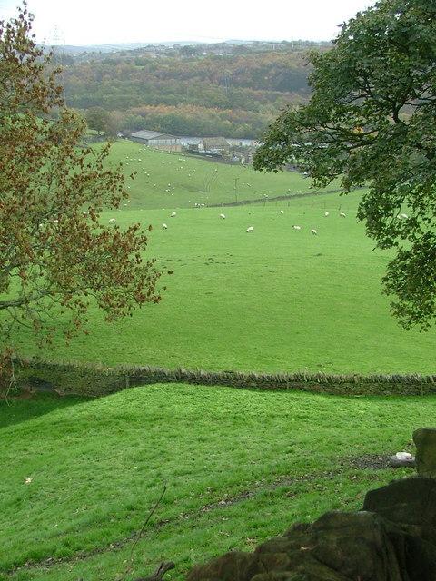 Towards Cromwell Bottom