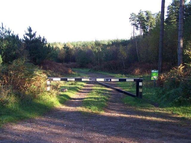 Footpath Near Fairoak Lodge