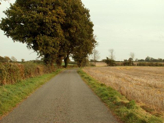 Hall Road, looking towards Semer