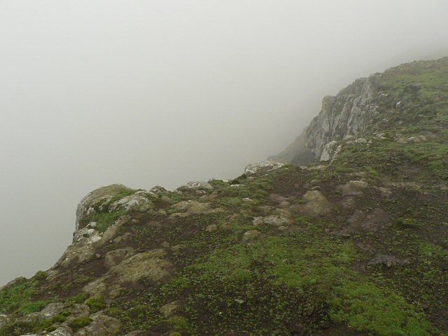 Black Hill cliffs in mist