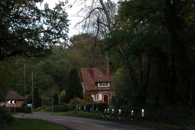 Cottages on the edge of Place Wood.