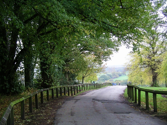 Road through Shipley Country Park