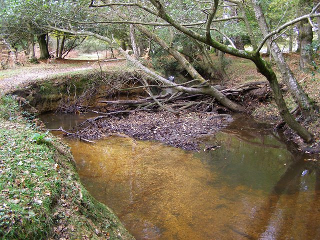 Natural meander in canalised Highland Water, New Forest