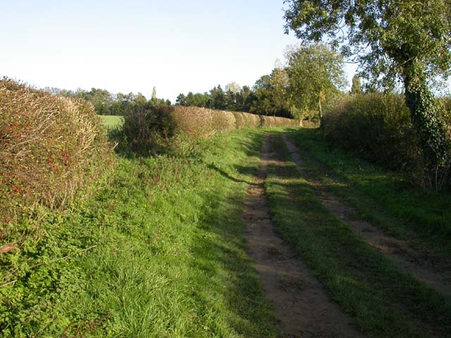 Enclosed Bridleway