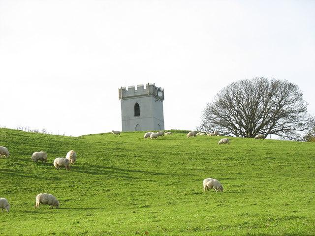 Sheep grazing below the Coed Helen Tower
