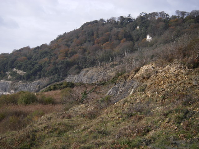 The undercliff above Pinhay bay