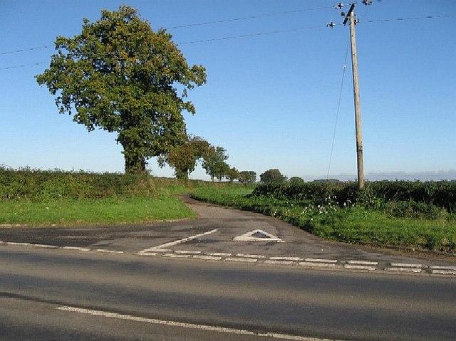 A Little Lane