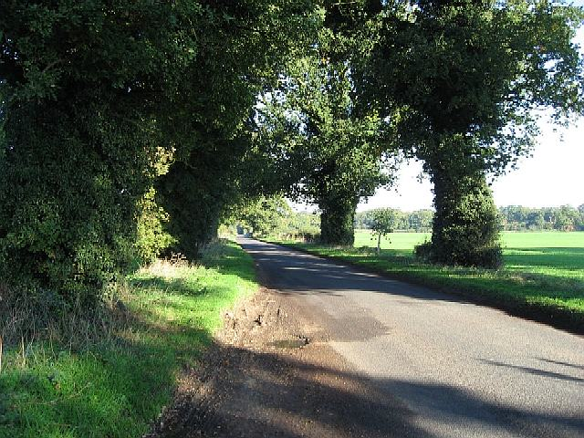 The Road From Scoulton Mere