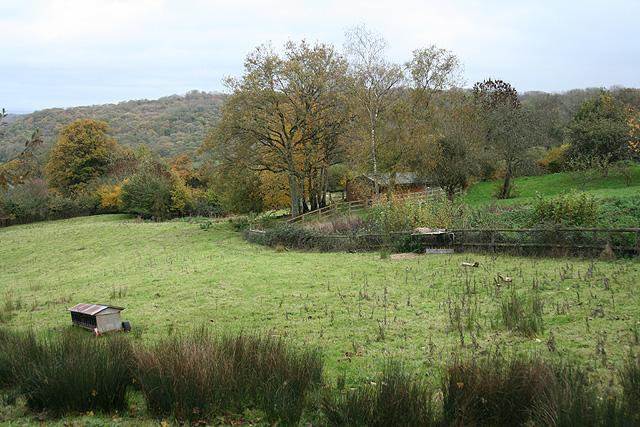 Pitminster: on Blagdon Hill