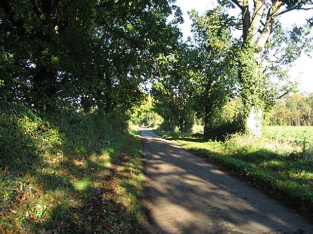 Mere Lane