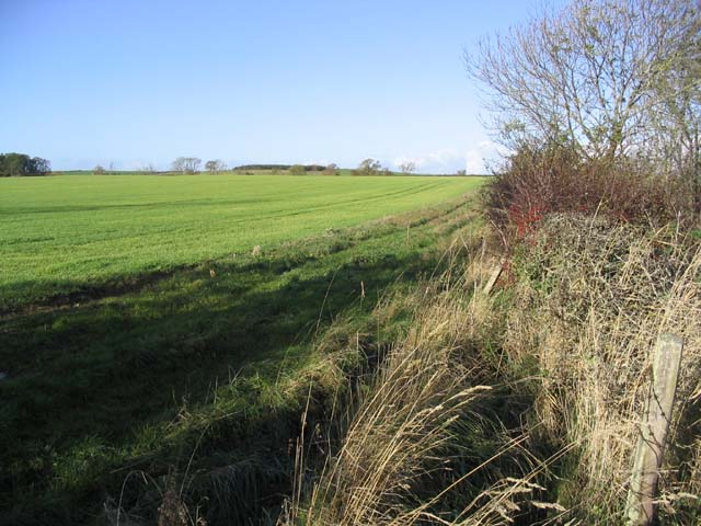 Field near Winfield Farm
