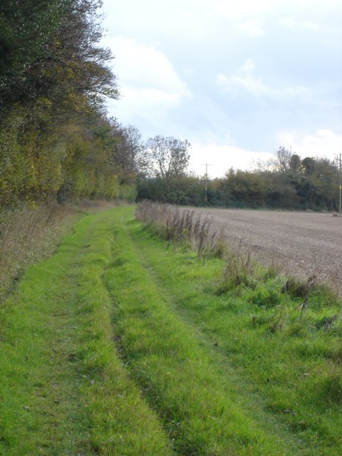 Footpath next to Hill Copse