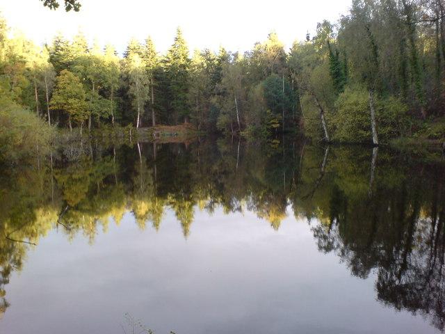 Gypsum pond in High Stand Plantation