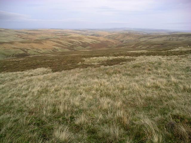 Looking downhill to Blackhope Water