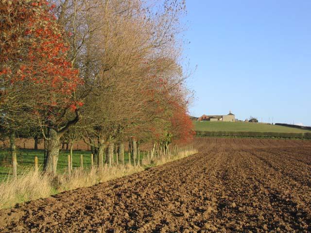 Baldersbury Hill Farm