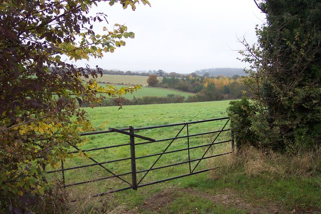 Field and woodland near Southrop