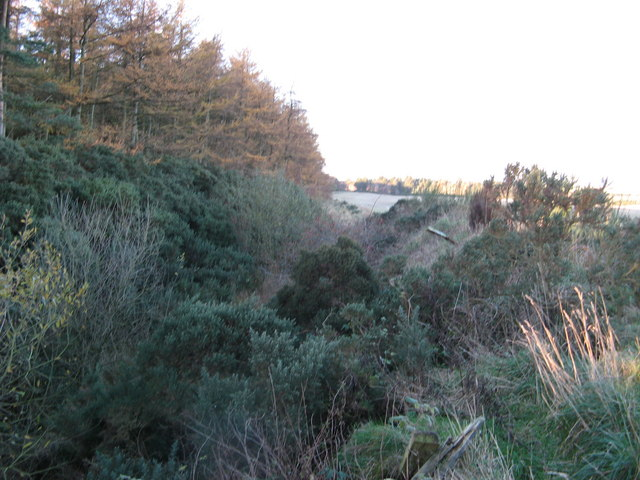 Dismantled Railway, north of Tillynaught