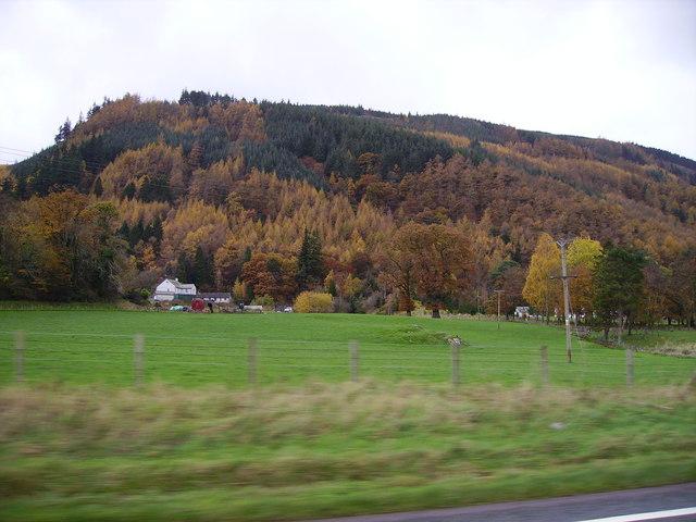 Powterhow Wood