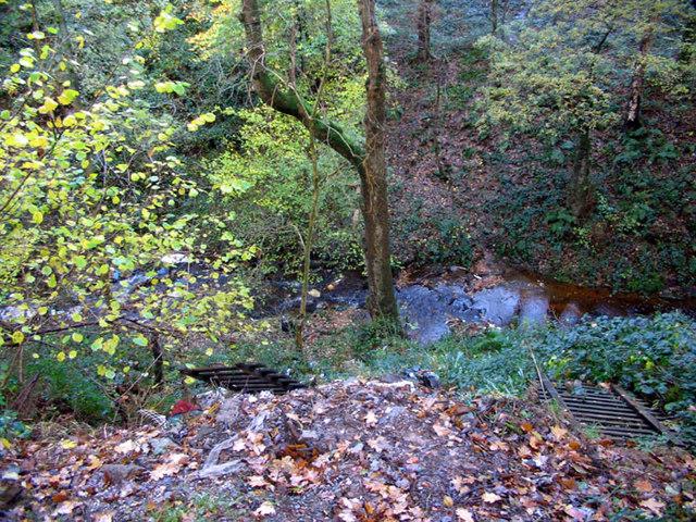 Nature Trail, Bonhill