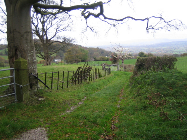 Bridleway and public footpath south of Cae-gwyn