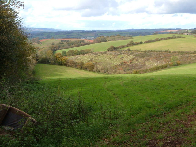 Haccombe valley above Deer Park  Farm