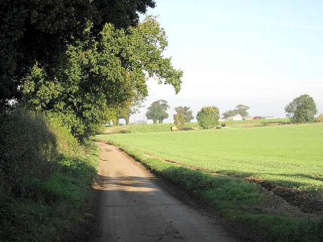 The Road To Necton
