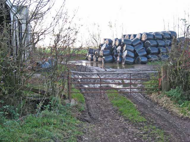 Farmyard, Holling Carr, Trimdon