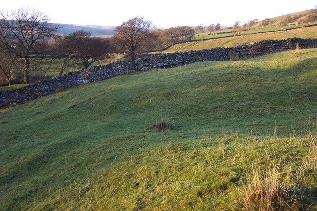 Drystone wall in Fossdale