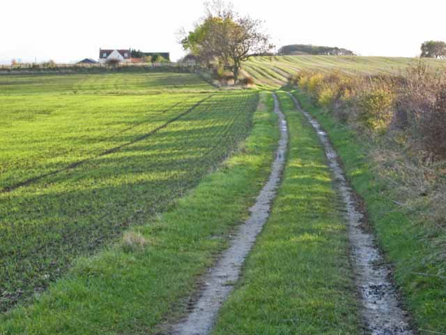 Track to Benkowle Farm